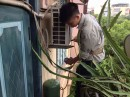 Sửa Chữa Điều Hòa Tại Sơn Trà - Ngũ Hành Sơn - Đà Nẵng